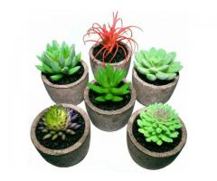 Succulent Plants Home Decoration Fake Plants Indoor Artificial Plants with Pots